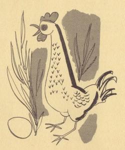picture-cb-chicken